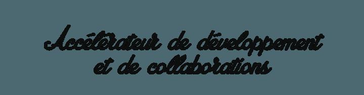 Slogan Damier